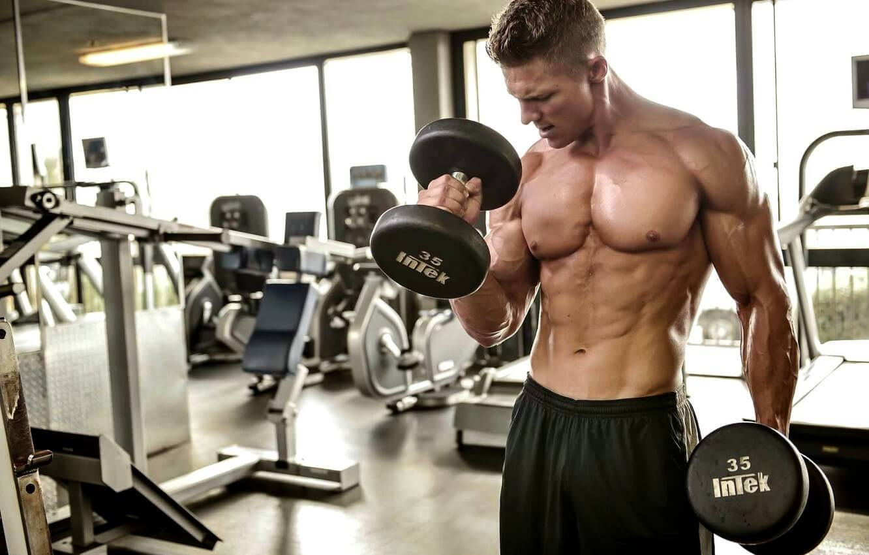 temelj mišićnog rasta