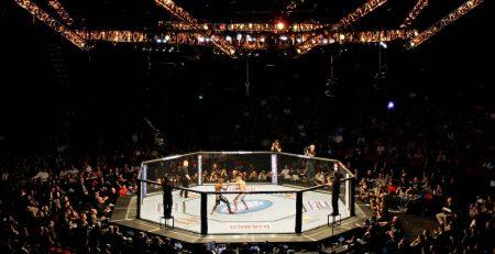 MMA Ishrana