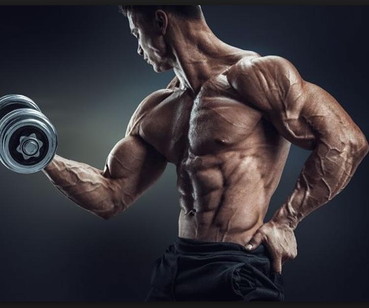 povećanje mišićne mase