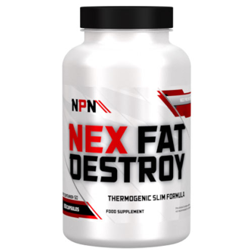 FAT DESTROY