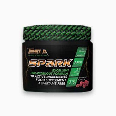 tesla-spark_p-500×500